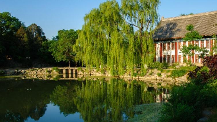 了解北京大学中文系的魅力