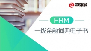FRM 一级金融词典电子书