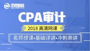 2018CPA审计