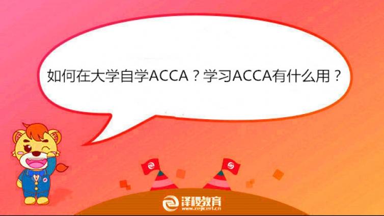 如何在大学自学ACCA?学习ACCA有什么用?
